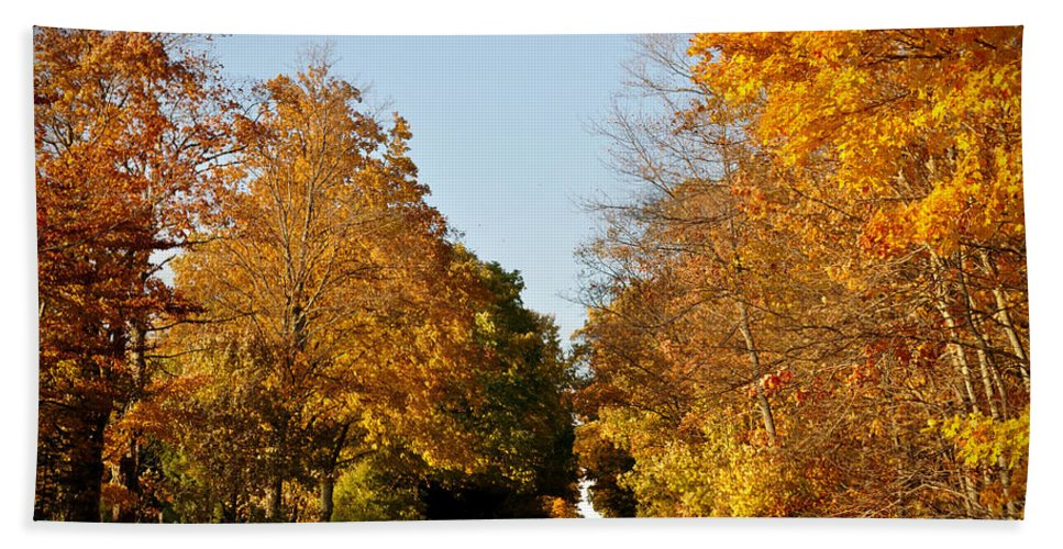 Fall Beach Towel featuring the photograph Fall Road by Tim Nyberg