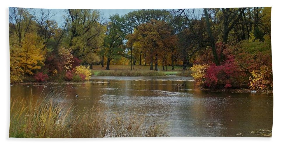 Fall Beach Towel featuring the photograph Fall Series 9 by Anita Burgermeister