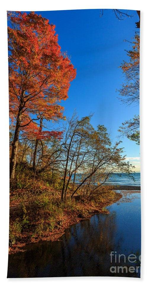Autumn Beach Towel featuring the photograph Fall Trails by Andrew Slater