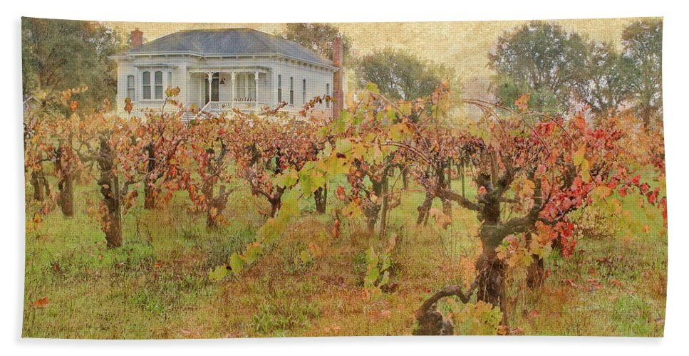 California Beach Towel featuring the photograph Fall Vines by Dan Cassat