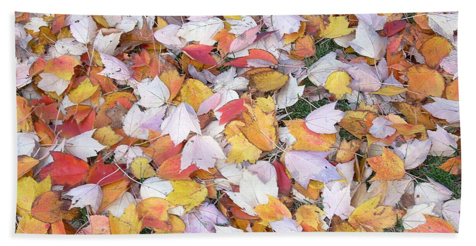Photography Fall Autum Leaves Beach Sheet featuring the photograph Fallen Fantasy by Karin Dawn Kelshall- Best