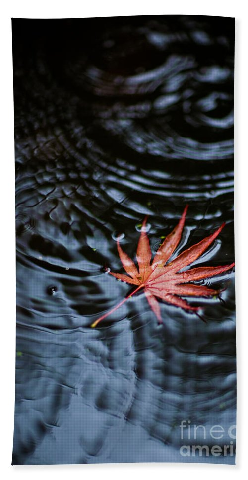 Red Leaf Beach Towel featuring the photograph Fallen Red by Mike Reid