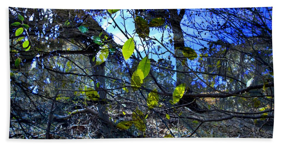 Leaves Beach Towel featuring the photograph Falling Leaves by Kelly Jade King