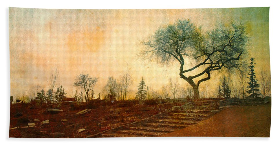 Tree Beach Towel featuring the photograph Familiar Like Home by Tara Turner