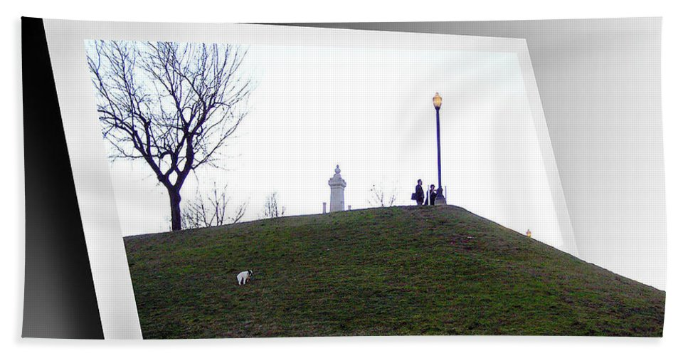 2d Beach Towel featuring the photograph Federal Hill Dog by Brian Wallace
