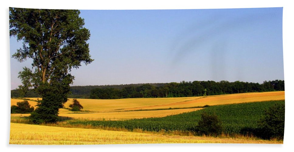 Landscape Beach Towel featuring the photograph Field Flow by Deborah Crew-Johnson