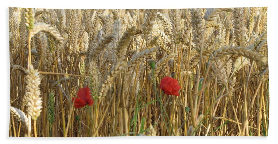 Poppy Beach Towel featuring the photograph Field Of Dreams by Maria Joy