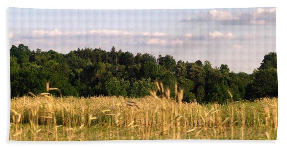Field Beach Sheet featuring the photograph Fields Of Grain by Rhonda Barrett