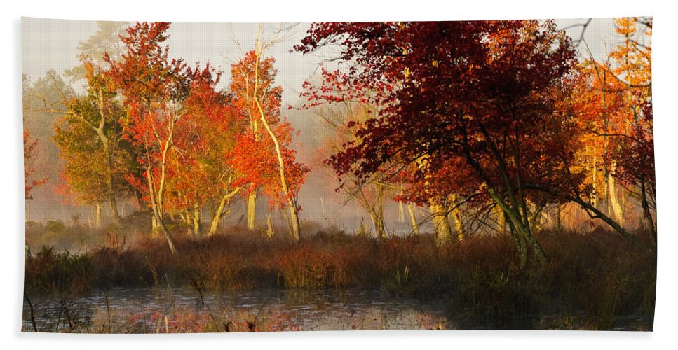 Landscape Beach Towel featuring the photograph First Light At The Pine Barrens by Louis Dallara