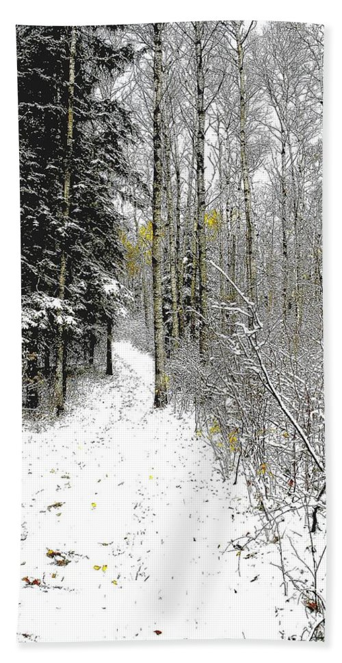 Winter Beach Towel featuring the photograph First Snowfall by Nelson Strong
