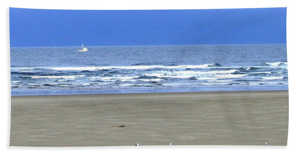 Seagull Beach Towel featuring the photograph Flaps Down by Will Borden