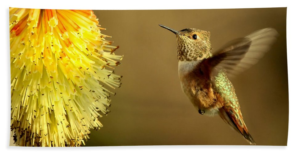 Hummingbird Beach Sheet featuring the photograph Flight Of The Hummer by Mike Dawson