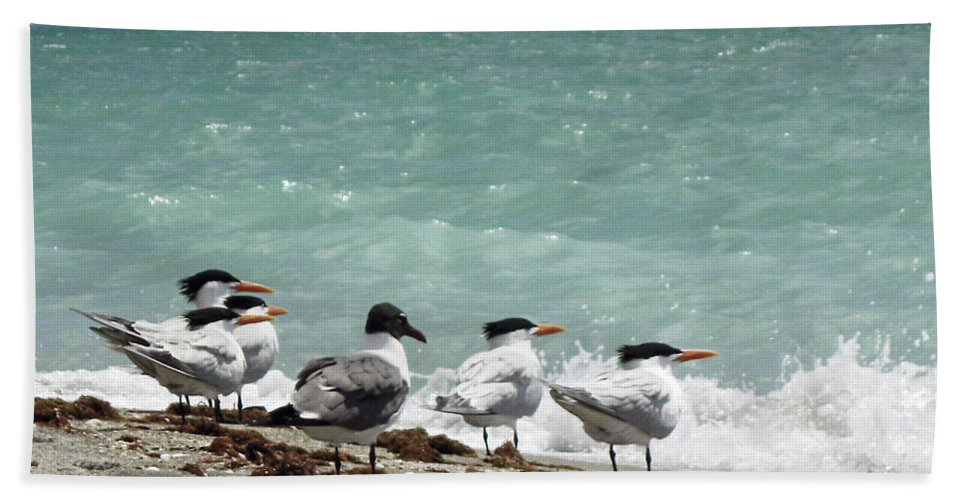 Florida Beach Towel featuring the photograph Flock Of Terns Gp by Chris Andruskiewicz