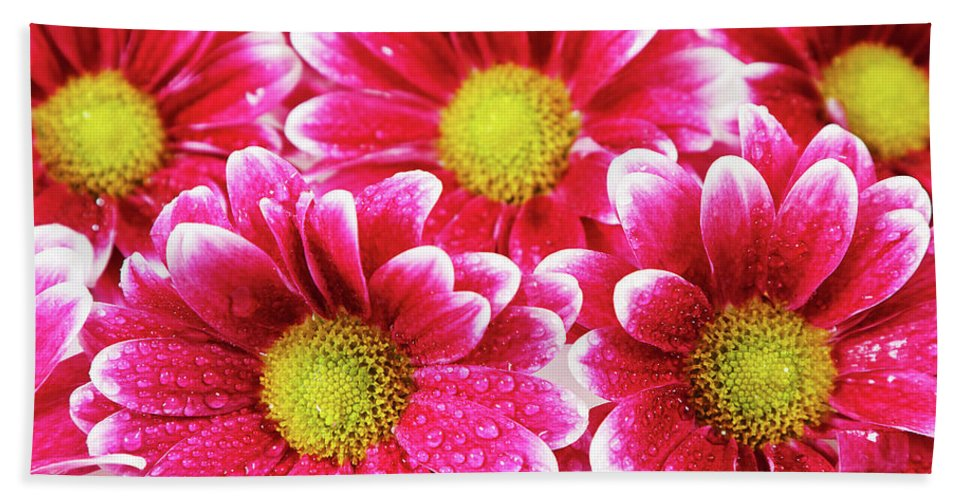 Background Beach Towel featuring the photograph Floral Wallpaper by IPolyPhoto Art