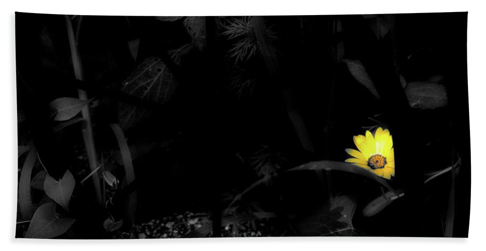 Flower Beach Towel featuring the photograph Floral Yellow Peek A Boo Sc by Thomas Woolworth