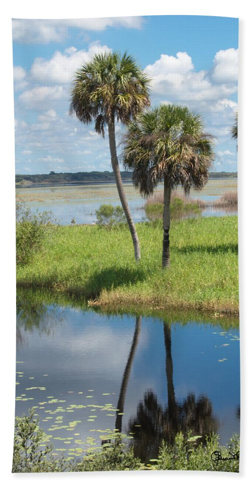 florida Essence - The Myakka River Beach Towel featuring the photograph Florida Essence - The Myakka River by Susan Molnar