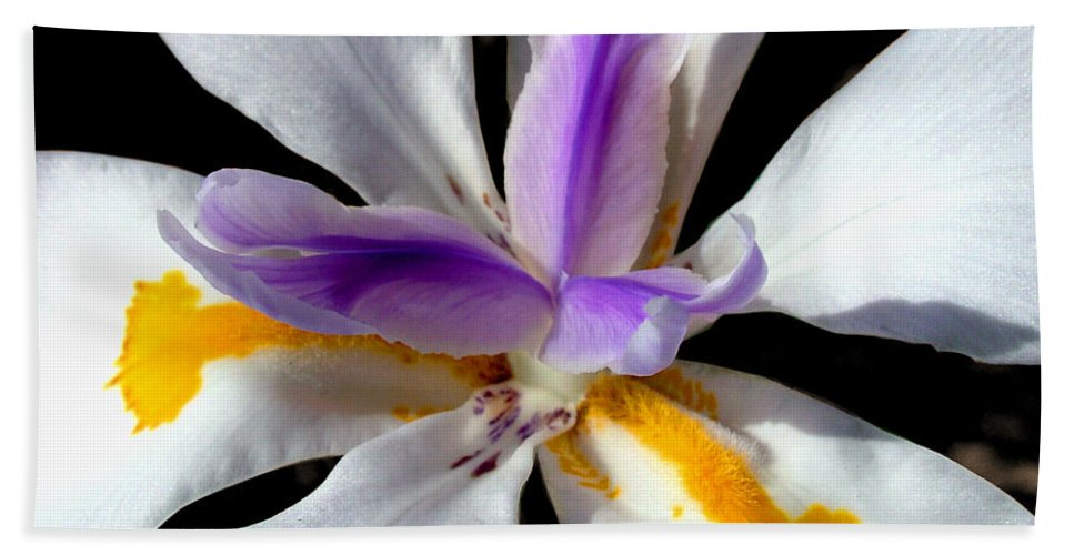Flowers Beach Towel featuring the photograph Flower by Anthony Jones