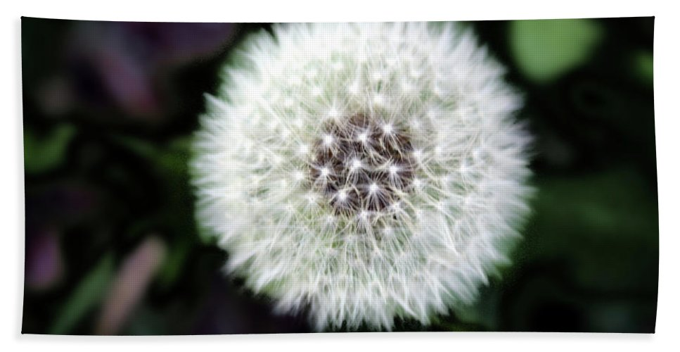 Weed Beach Towel featuring the photograph Flower Of Flash by Mark Ashkenazi