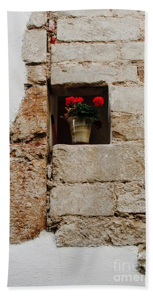 Flower Beach Towel featuring the photograph Flower Pot In Niche by Thomas Marchessault