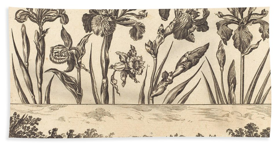 Beach Towel featuring the drawing Flower Print No.3 by Nicolas Cochin After Balthasar Moncornet
