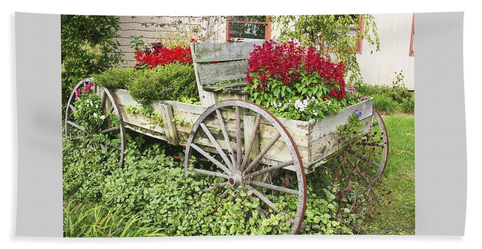 Wagon Beach Towel featuring the photograph Flower Wagon by Margie Wildblood