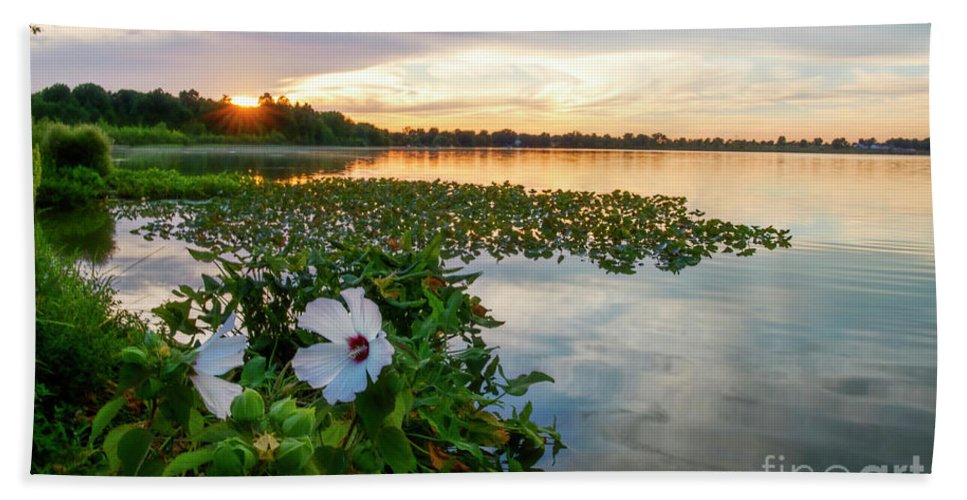 Flowers Beach Towel featuring the photograph Flowers At Sunset by David Arment