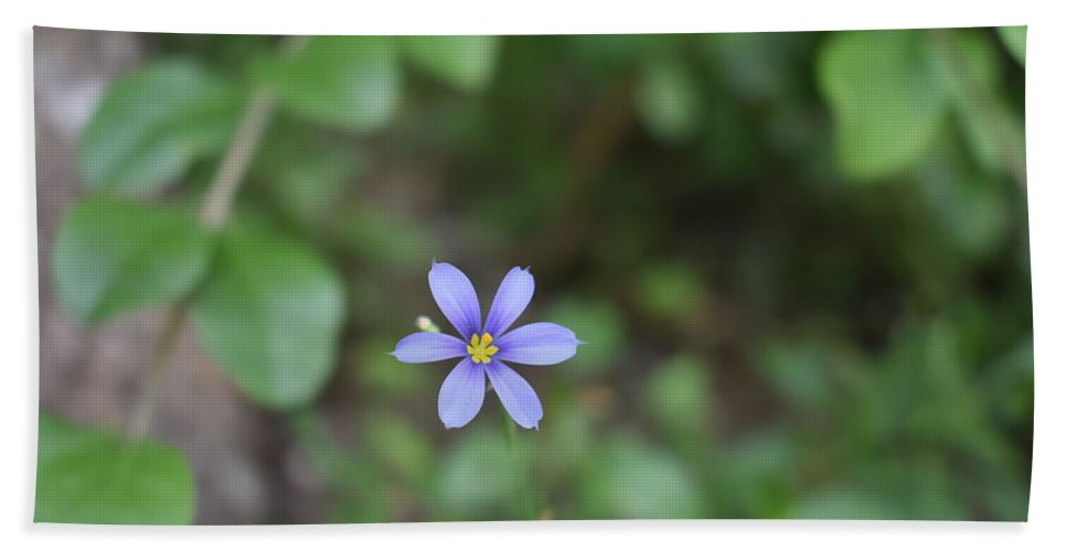 Flowers Beach Towel featuring the photograph Flowers by Naga Ikkurthi