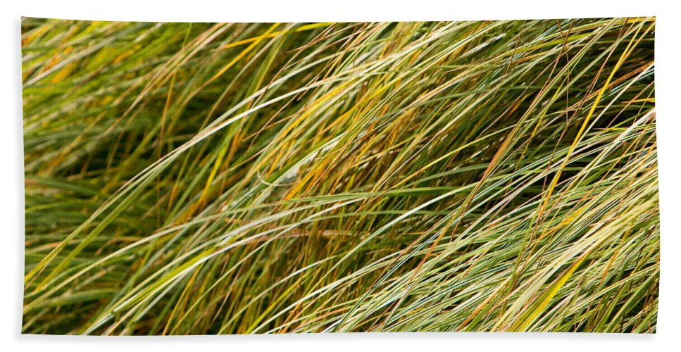 Abstract Beach Towel featuring the photograph Flowing Green Grass Abstract by James BO Insogna