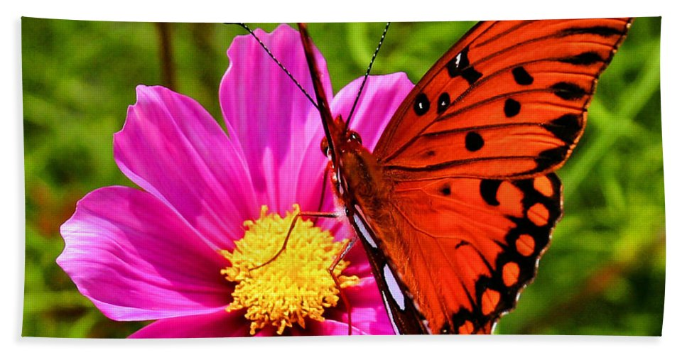 Butterfly Beach Towel featuring the photograph Fritillary Flutterby by Kristin Elmquist