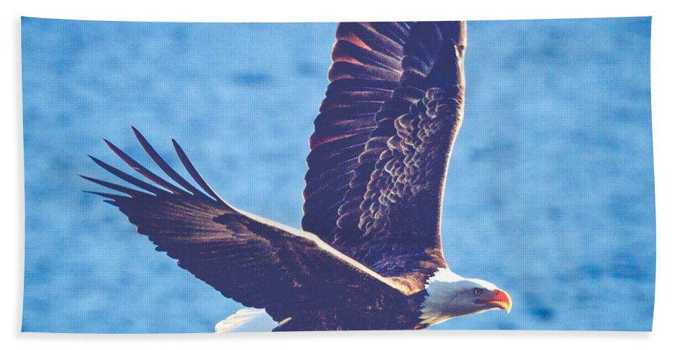 Air Beach Towel featuring the photograph Fly By Eagle. 2 Of 3 by Charles Wollertz