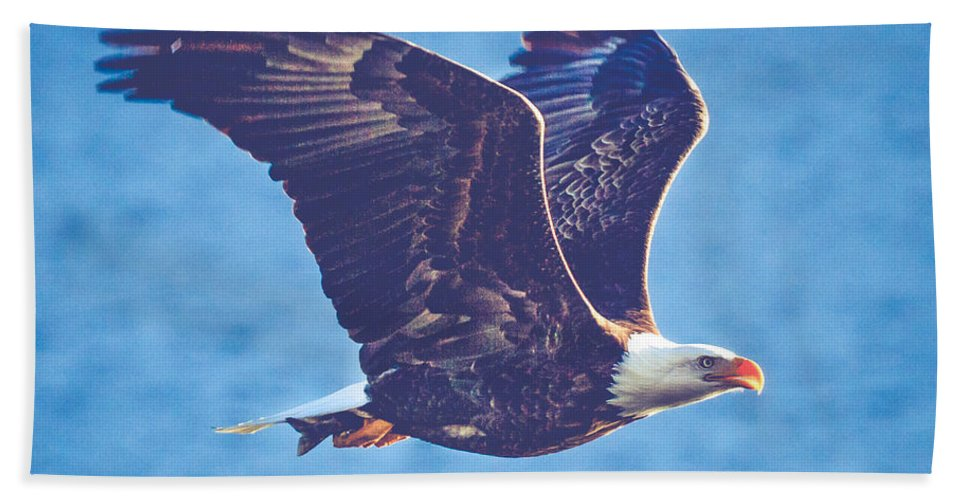 Air Beach Towel featuring the photograph Fly By Eagle. 3 Of 3 by Charles Wollertz