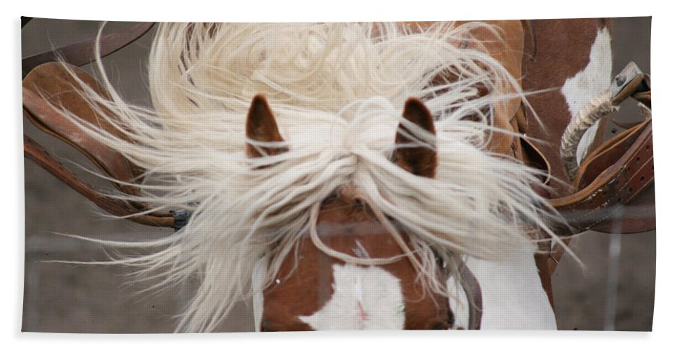Horse Bronc Rodeo Saddle Rider Close Show Horses Wild Beach Towel featuring the photograph Flyin Bronc by Andrea Lawrence