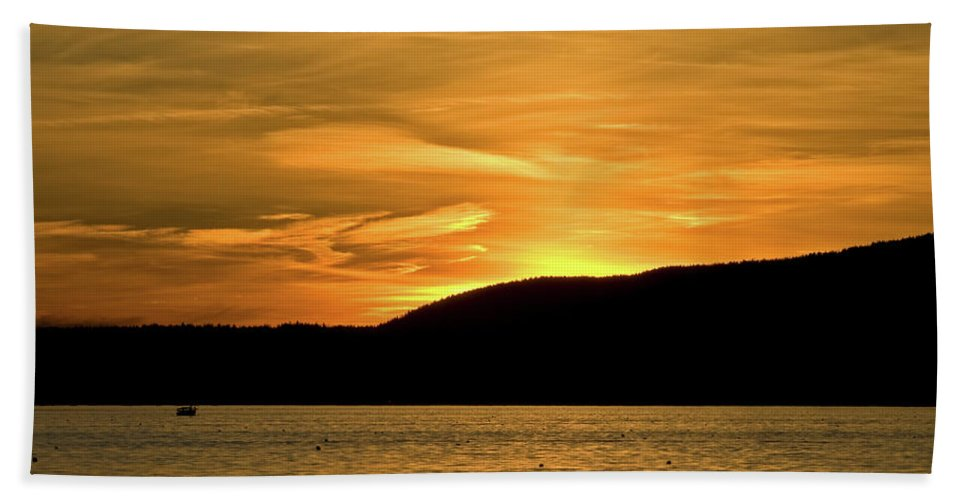 acadia National Park Beach Towel featuring the photograph Flying Home by Paul Mangold