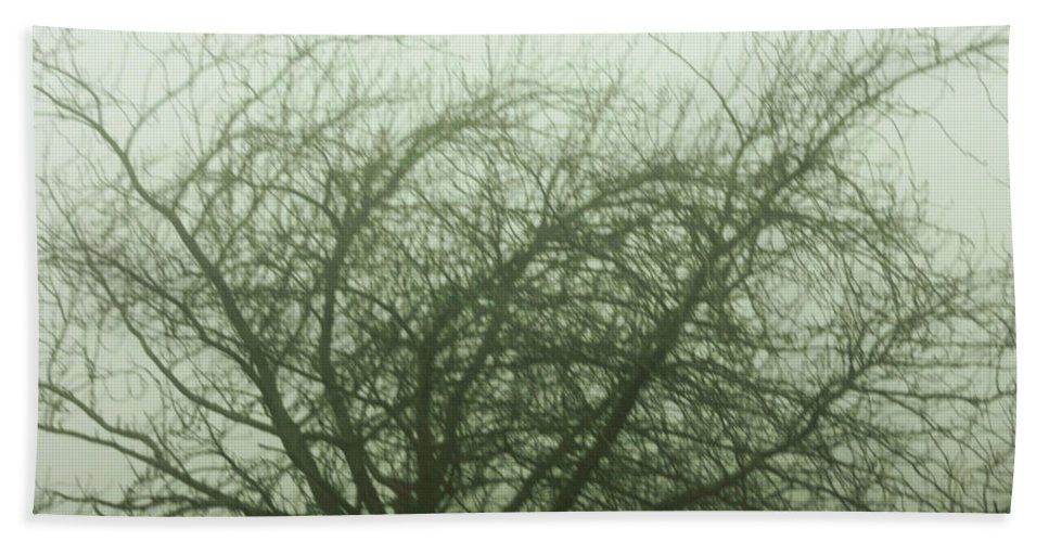 Fog Beach Towel featuring the photograph Fog by Frances Lewis