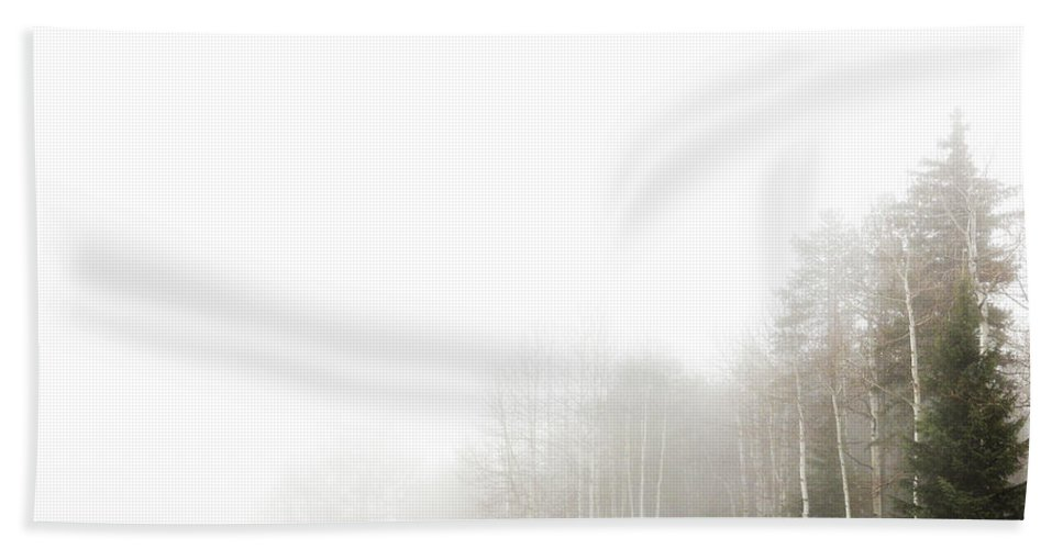 Colorado Beach Towel featuring the photograph Fog In The Meadow by Martina Haaga