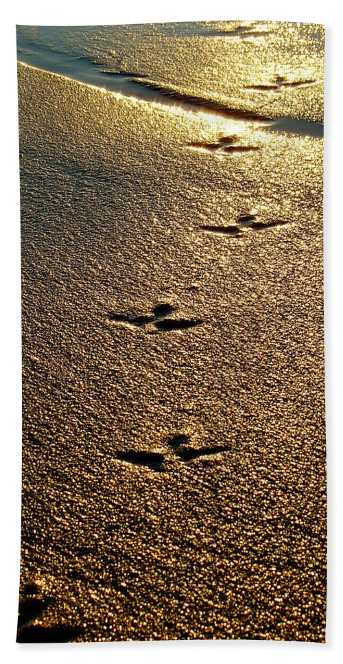 Sand Beach Towel featuring the photograph Footprints - Bird by Jill Reger