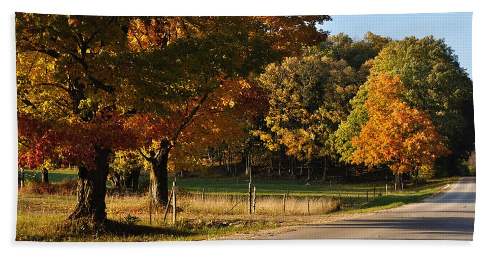 Fall Beach Towel featuring the photograph For Grazing by Tim Nyberg