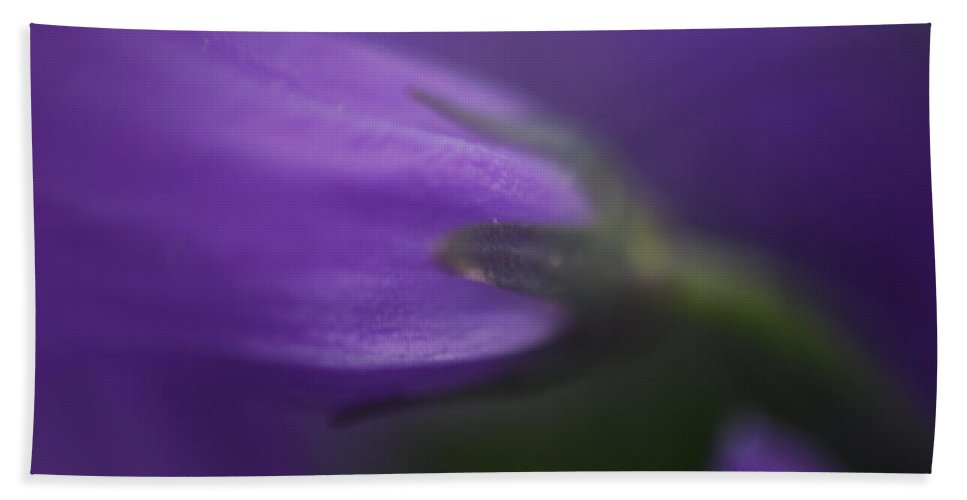 Flower Beach Towel featuring the photograph For The Love Of Purple by Lori Tambakis