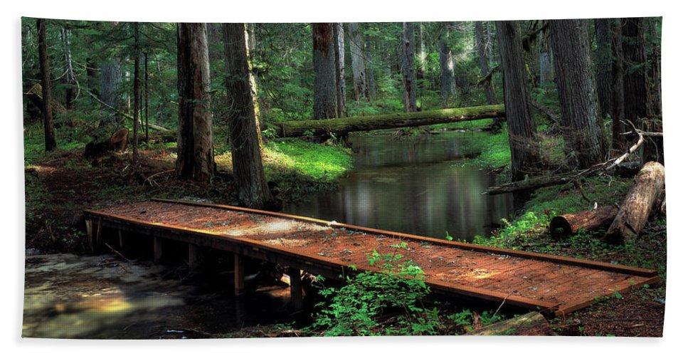 Idaho Scenics Beach Towel featuring the photograph Forest Foot Bridge by Leland D Howard