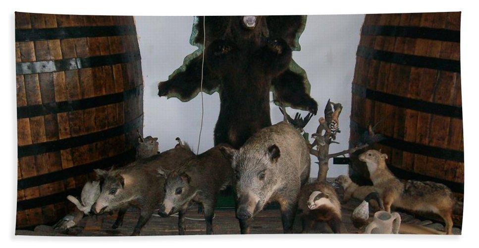 Animals Beach Towel featuring the photograph Forest Friendship by Georgeta Blanaru
