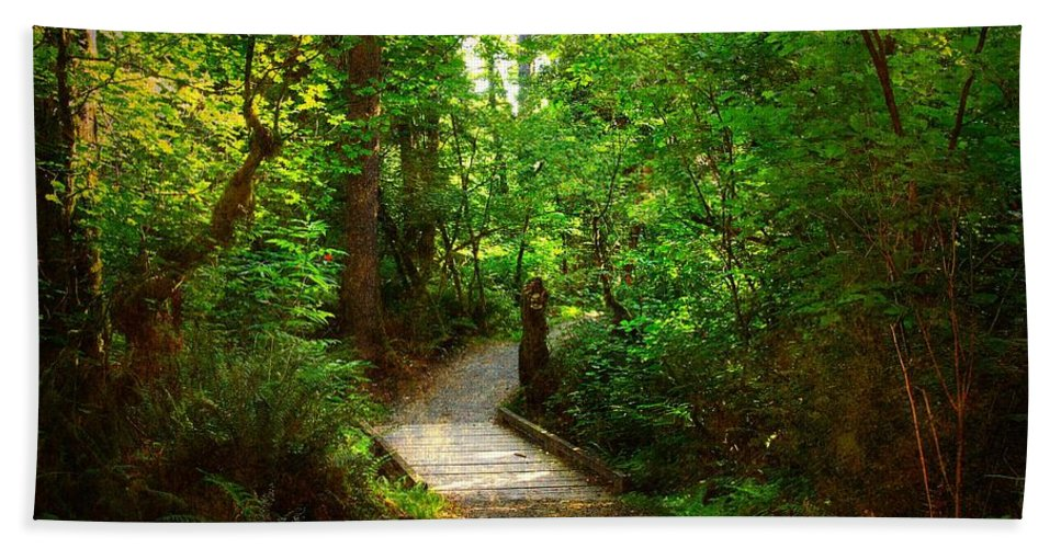 Trail Beach Towel featuring the photograph Forest Trail by Sharon Talson