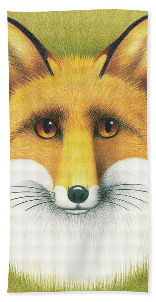 Drawing Beach Towel featuring the drawing Fox Portrait by Mike Farrell