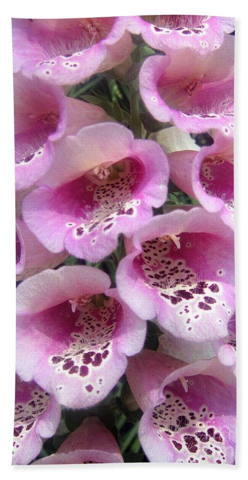 Pink Bell Flowers Beach Towel featuring the photograph Foxglove Plant - Pink Bell Flowers. Macro by Sofia Metal Queen