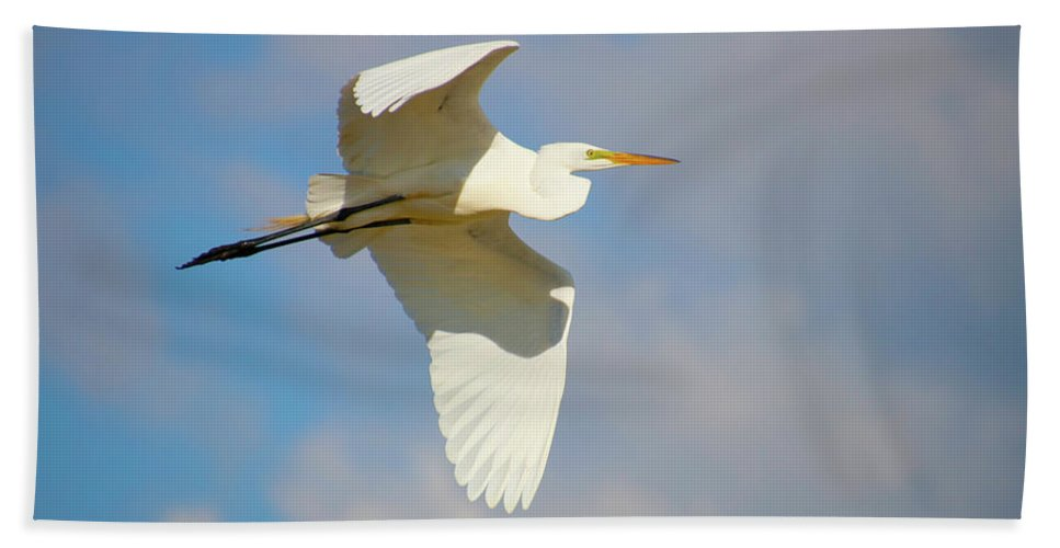 Beach Sheet featuring the photograph Free Flying by Tony Umana