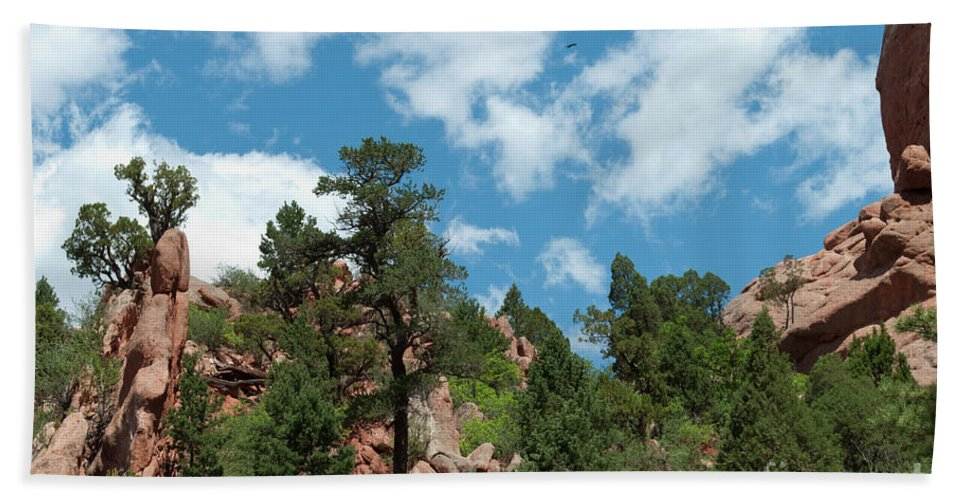 Garden Of The Gods Beach Towel featuring the photograph Freebird by Paulette B Wright