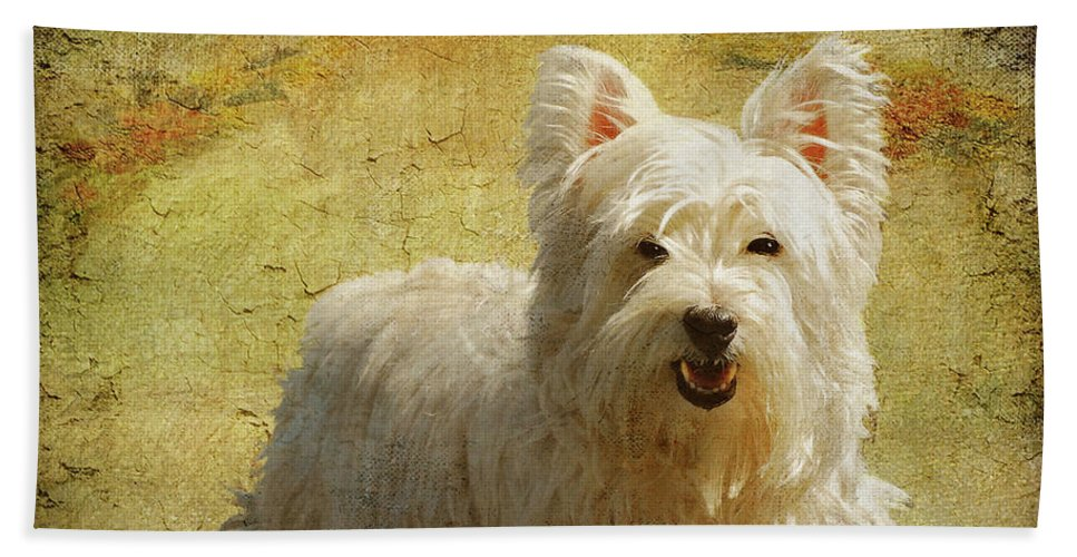 Dogs Beach Towel featuring the photograph Friendly Smile by Lois Bryan