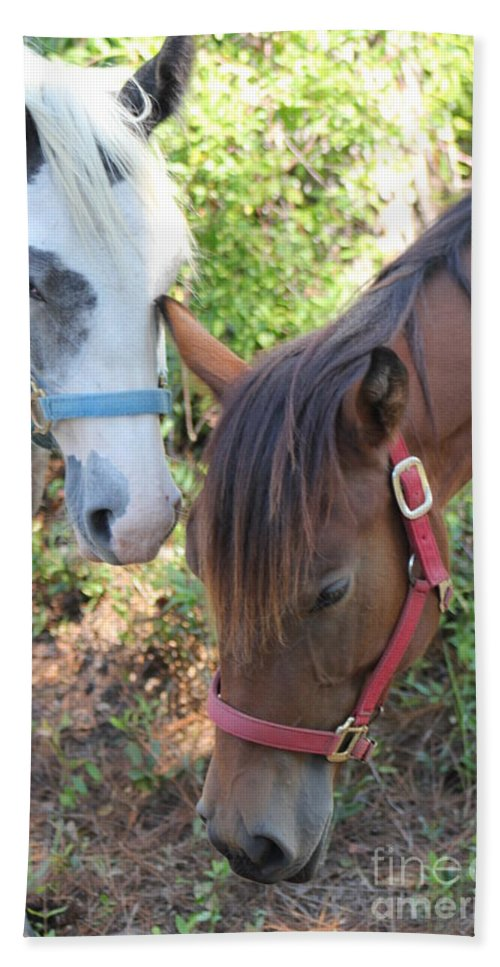 Horses Beach Towel featuring the photograph Friends by Michelle Powell