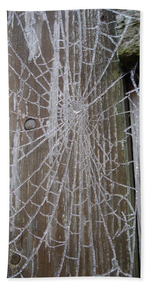 Winter Beach Towel featuring the photograph Frosty Web by Susan Baker