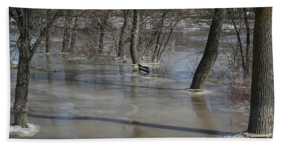 Spring Beach Towel featuring the photograph Frozen Floodwaters by Mary Mikawoz