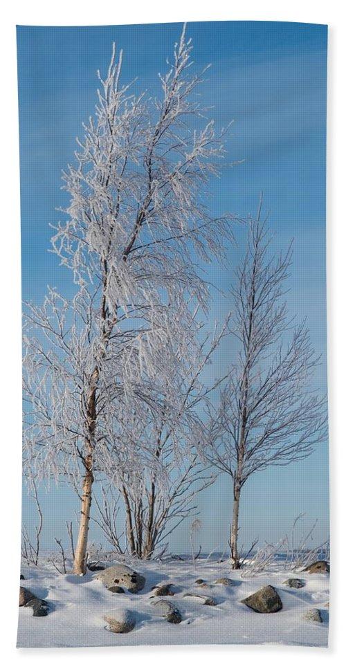 Talvi Beach Towel featuring the photograph Frozen Views 1 by Jouko Lehto